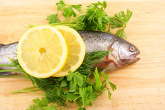 Raw fish with lemon and parsley. On wooden background Stock Image
