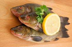 Raw fish with lemon and parsley Royalty Free Stock Photo