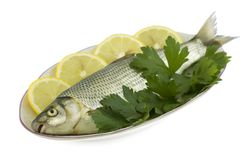 Raw fish with lemon and parsley Stock Photo