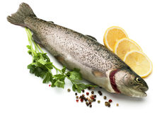 Raw fish with lemon, parsley, spice Stock Image