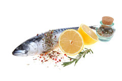 Raw fish with lemon and rosemary Stock Photos