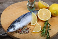 Raw fish with lemon and rosemary Royalty Free Stock Images