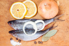 Raw fish with lemon and vegetables Royalty Free Stock Photography