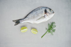 Raw fish, limes and dill Stock Photo
