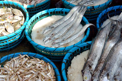 Raw fish market Royalty Free Stock Photo