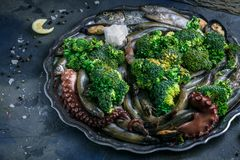 Raw fish, octopus, s.hrimps and mussels on a plate with vegetables. Raw fish, octopus, shrimps and mussels on a plate with vegetables, close view. Earth Royalty Free Stock Photos