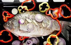 Raw fish with onion and pepper slices Royalty Free Stock Photography
