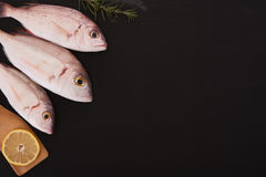 Raw fish with other ingredients. Raw fish Pagellus, lemon and rosemary on black stone board Royalty Free Stock Images