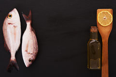 Raw fish with other ingredients Stock Photography
