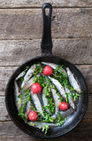 Raw fish in the pan Stock Images