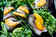 Raw fish on  the pan. Raw fish with vegetables and herbs on the pan stock image