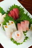 Raw Fish Plate of Fresh Sushi Royalty Free Stock Image