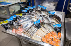 Raw fish ready for sale in the supermarket Perekrestok. One of l Stock Images