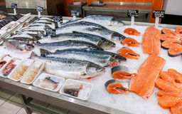 Raw fish ready for sale in the supermarket Stock Images