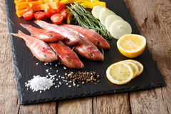 Raw fish red mullet with fresh vegetables and spices close-up. h Royalty Free Stock Images