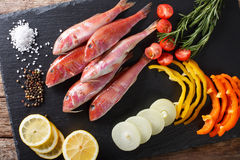 Raw fish red mullet with vegetables and lemon close-up on the ki Stock Photos