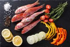 Raw fish red mullet with vegetables and lemon on the table. hori Stock Images