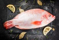 Raw fish red tilapia Royalty Free Stock Photo