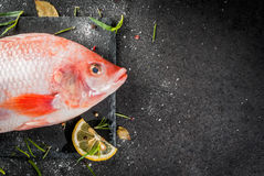 Raw fish red tilapia. On a chopping board on a black stone table, with spices, lemon and herbs for cooking. Top view copy space Royalty Free Stock Photography