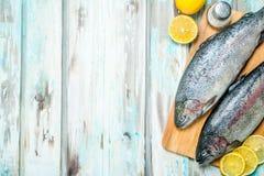 Raw fish salmon with lemon royalty free stock photo
