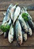 Raw fish (scad) Royalty Free Stock Photos
