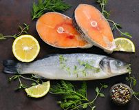Raw fish sea bass and salmon. With lemon and herbs Royalty Free Stock Images
