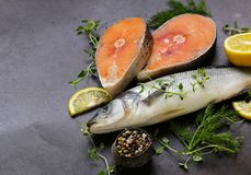 Raw fish sea bass and salmon. With lemon and herbs Royalty Free Stock Image