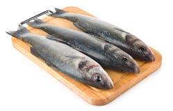 Raw fish sea bass Royalty Free Stock Photography