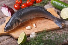 Raw fish seabass on chopping board with vegetables. Closeup horizontal. top view Royalty Free Stock Photos