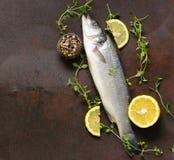 Raw fish seabass. With lemon and herbs Stock Photo