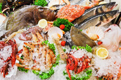 Raw fish and seafood in ice. On street market in Italy Royalty Free Stock Photography