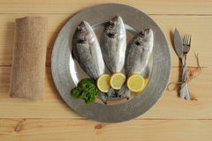Raw fish silver tray. On wooden background pine Royalty Free Stock Image