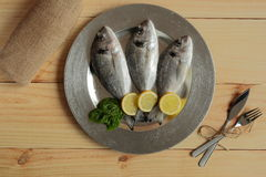 Raw fish silver tray. On wooden background pine Royalty Free Stock Photos