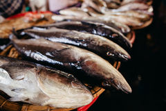 Raw fish sliced and cut at street market Royalty Free Stock Images