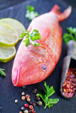 Raw fish. With spice on black board Royalty Free Stock Photos
