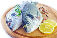 Raw fish. With spice on board Royalty Free Stock Photography