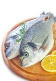 Raw fish. With spice on board Royalty Free Stock Photo