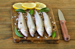 Raw fish with spices and lemon Royalty Free Stock Photos