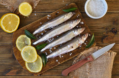 Raw fish with spices and lemon Royalty Free Stock Image