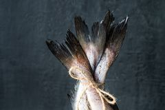 Raw fish tails tied with rope with bow on dark background. Selective focus.  Royalty Free Stock Image