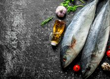 Raw fish with tomatoes on branch, greens and oil. On dark rustic background stock image