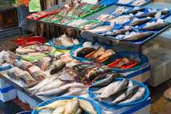 Raw fish at traditional market in Taiwan Royalty Free Stock Images