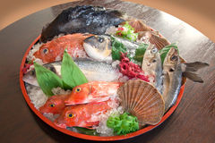 Raw fish on tray Stock Photos