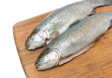 Raw fish trout on a cutting board close up. Horizontal photo Stock Photography