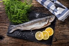 Raw fish trout with herbs dill lemon and salt on rustic oak tabl. E Stock Photography