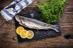 Raw fish trout with herbs dill lemon and salt on rustic oak tabl. E Royalty Free Stock Image