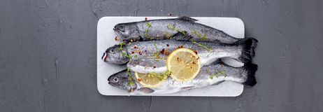 Raw fish. Trout with lemon and spices on a white stone board. Gr. Ay background. Free space for text. copy space. flat lay Royalty Free Stock Photography