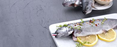 Raw fish. Trout with lemon and spices on a white stone board. Gray background. Free space for text. copy space. flat lay. banner,. Raw fish. Trout with lemon and Stock Photography