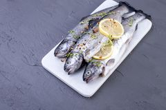 Raw fish. Trout with lemon and spices on a white stone board. Gray background. Free space for text. copy space. flat lay.  Royalty Free Stock Photography