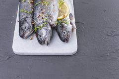 Raw fish. Trout with lemon and spices on a white stone board. Gray background. Free space for text. copy space. flat lay.  Stock Images